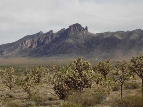 Gorgeous Parcel, Views, $150 P/Mo : Dolan Springs : Mohave County : Arizona