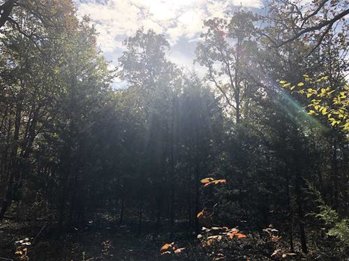 15 Acres With Highway 54 Fronta : Hermitage : Hickory County : Missouri