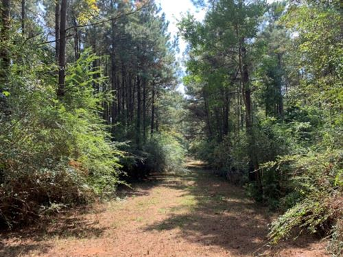 47 Acres In Pike County In McComb : McComb : Pike County : Mississippi