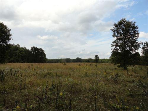 Great Property Scenic Views Salem : Salem : Dent County : Missouri