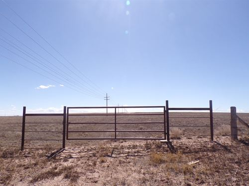 160 Acres New Mexico Grazing Land : Estancia : Torrance County : New Mexico