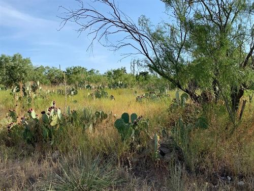 Land For Sale In Big Spring : Big Spring : Howard County : Texas