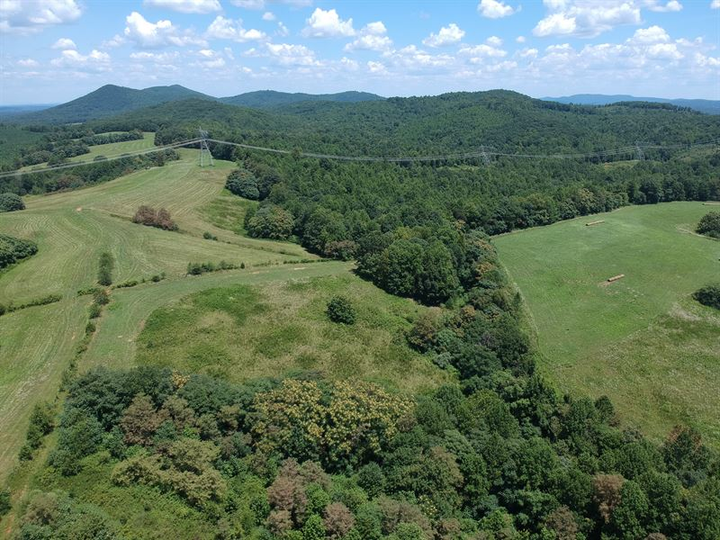 831 Contiguous Acres : Bassett : Franklin County : Virginia
