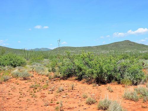 Amazing Scenic Ranch Land, $334/M : Douglas : Cochise County : Arizona
