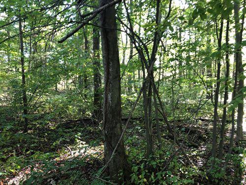 Wooded, Wetland & Hunt Ready : Muskegon : Michigan