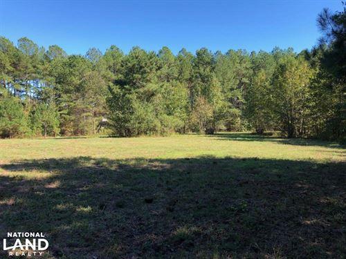 50 Acres Mature Timberland Carrollt : Carrollton : Carroll County : Georgia