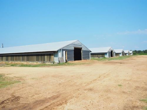6 House Poultry Broiler Farm, 52 Ac : Bogue Chitto : Lincoln County : Mississippi