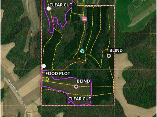 Montana Ridge Buck Nest, Home Baby : Montana : Buffalo County : Wisconsin