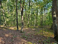 13 Acres in Desirable Cool Springs : Statesville : Iredell County : North Carolina