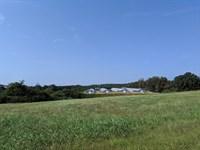 Wiginton Farm : Hackleburg : Marion County : Alabama