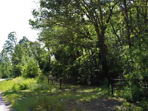 Wooded Land For Sale in Southern Mo : Seymour : Webster County : Missouri