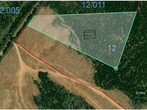 43-045 Stillwell 10 Acres : Salem : Lee County : Alabama