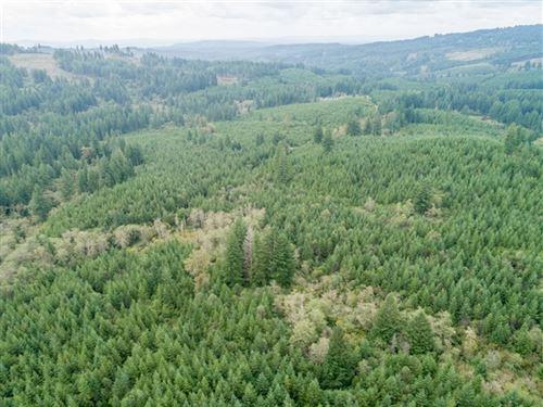 83.62 Acres in Washougal, WA : Washougal : Clark County : Washington