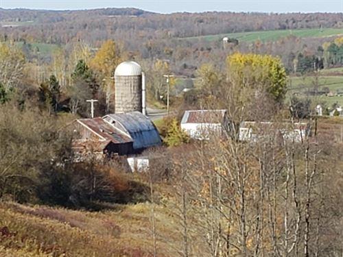 Farm, Hunting Plus Endless Views : Marathon : Broome County : New York