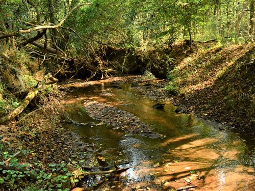 Holly Grove Sportsman Tract : Laurens : Greenville County : South Carolina