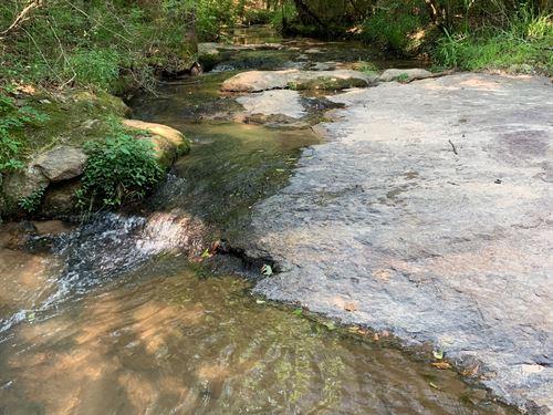 Shoals, Pine, Hardwood, Hunting : Good Hope : Walton County : Georgia