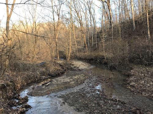 Henderson Road, 34 Acres : Guysville : Athens County : Ohio