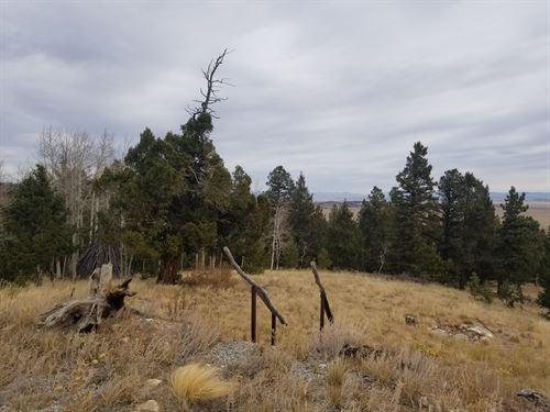 89-92 Ranch Court : Hartsel : Park County : Colorado