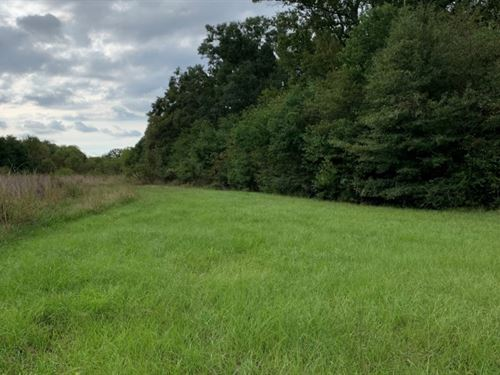 33 Acres In Madison County In Canto : Canton : Madison County : Mississippi