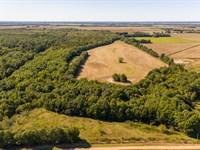 Arkansas Farm And Hunting Land : Biggers : Clay County : Arkansas