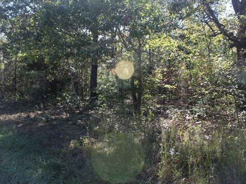 Five Acres With No Restrictions : Mountain View : Stone County : Arkansas