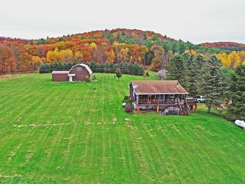 Country Home 8 Acres Mountain Top : Coudersport : Potter County : Pennsylvania