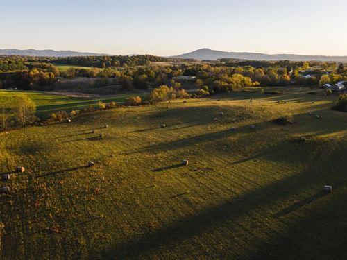 Open Commercial Farm Land, Dublin : Dublin : Pulaski County : Virginia
