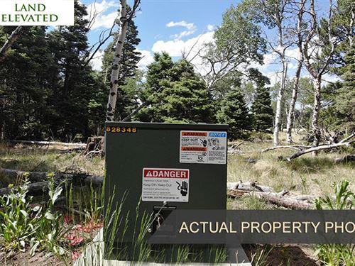 Great Mountain Location in Costilla : Fort Garland : Costilla County : Colorado