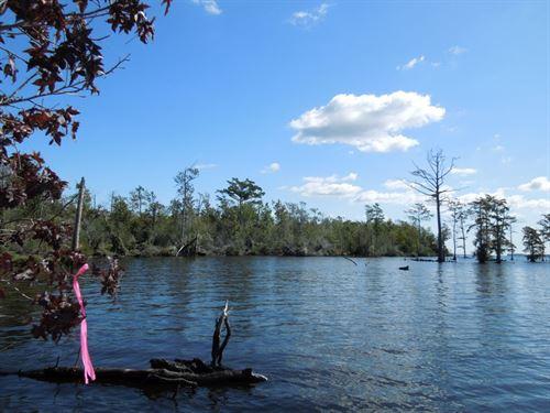 Riverfront Wildlife Refuge Tract : Elizabeth City : Camden County : North Carolina