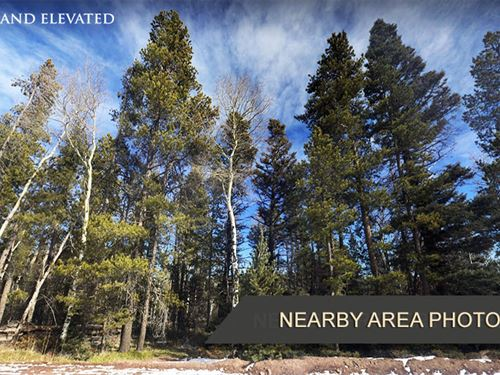 1.877 Acre Property For Sale in CO : Fort Garland : Costilla County : Colorado