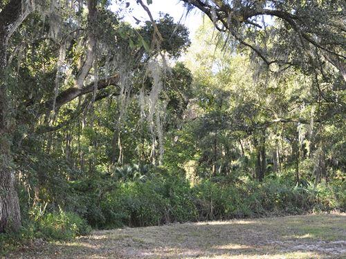 Plant City, Country Homesite : Plant City : Hillsborough County : Florida