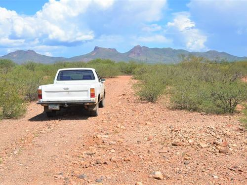 Fantastic Buildable Lot, $75/M : Douglas : Cochise County : Arizona