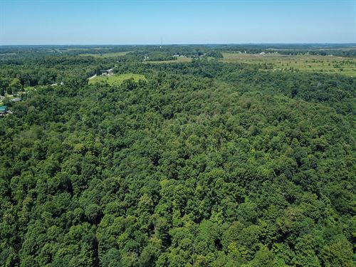 Cr 47, 29 Acres : Toronto : Jefferson County : Ohio