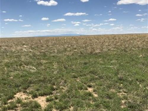 1000 Acres Of Return in Crp : Boone : Pueblo County : Colorado