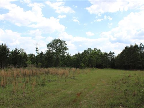 Ideal Site For Chicken Houses : Oglethorpe : Macon County : Georgia
