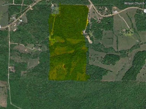 75 Acres For Sale in Ripley County : Doniphan : Ripley County : Missouri