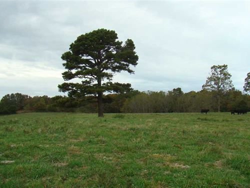 30 Acres With Highway Frontage Wit : Norwood : Wright County : Missouri