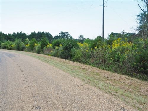 7 Acres Land For Sale, Home Site : New Hebron : Jefferson Davis County : Mississippi