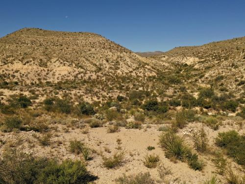 20 Acres With Lots Of Terrain : Terlingua : Brewster County : Texas