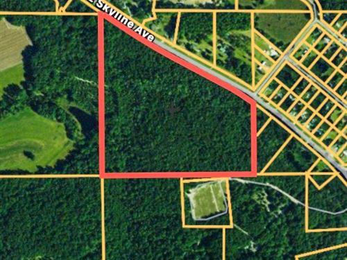 Land Geneva County AL 32 Acres : Geneva : Alabama