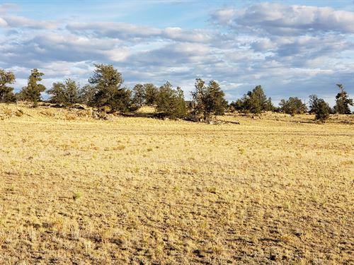 Serenity Awaits You On 4.28 Acres : Hartsel : Park County : Colorado