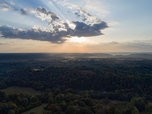 55 Acre Persimmon Hill : Duck River : Hickman County : Tennessee