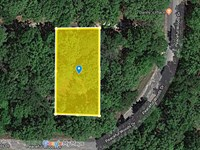 Own This Lot For Only $100 Down : Eustace : Henderson County : Texas