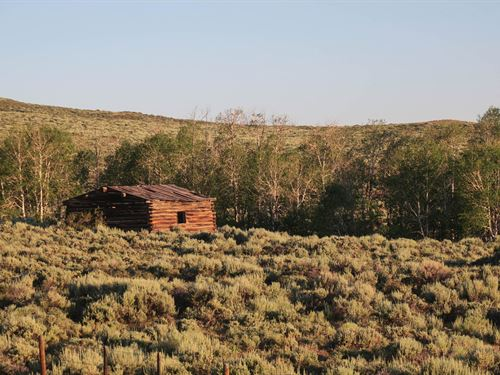 Badger Creek Homestead Ranch : Encampment : Carbon County : Wyoming