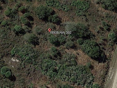 1.25 Acres in Okeechobee County, FL : Okeechobee : Florida