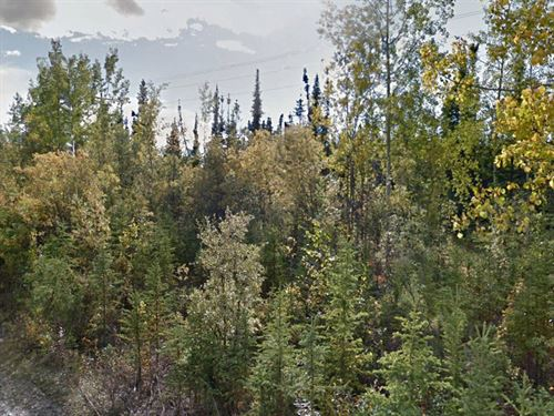 4.99 Acre Lot Near Delta Junction : Delta Junction : Southeast Fairbanks Borough : Alaska