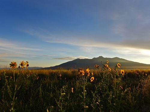 35 Acre San Luis Valley Retreat : San Luis : Costilla County : Colorado
