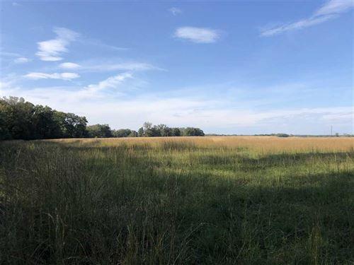 Huge Price Drop, 20 Acres Locat : Vilonia : Faulkner County : Arkansas