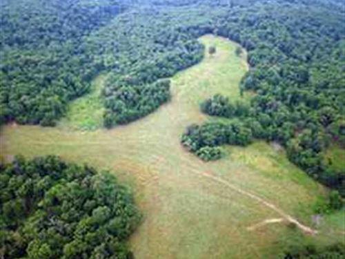 Great 584 Acre Combination Farm MO : Stover : Morgan County : Missouri