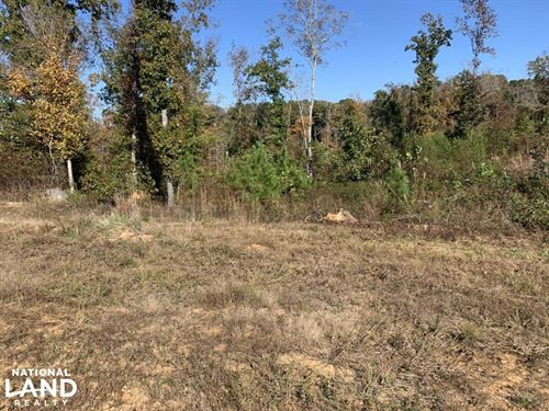 6 Acre Building Lot : Reagan : Henderson County : Tennessee